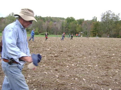 Sowing the field
