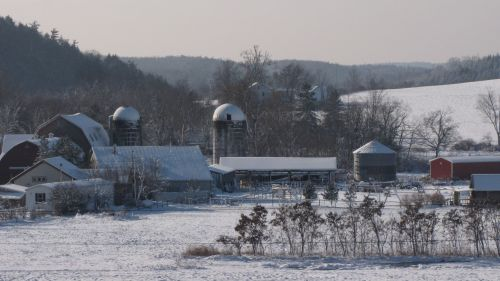 Hawthorne Valley Farm in Winter.